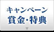 キャンペーン賞金