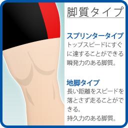 脚質タイプ